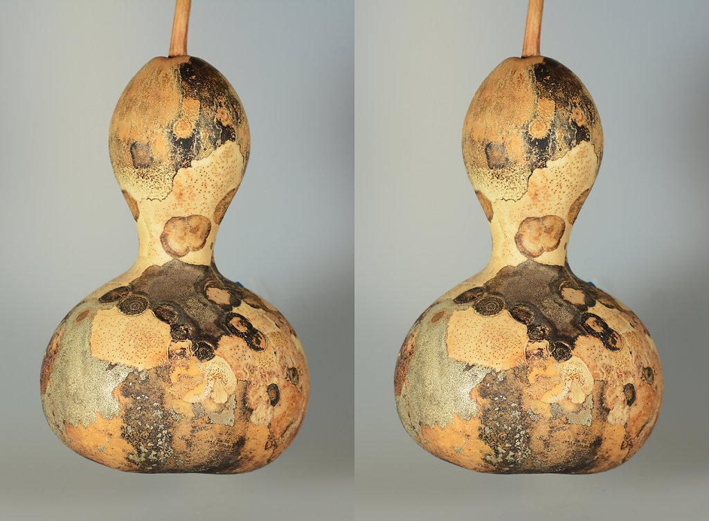 3D Gourd Wars