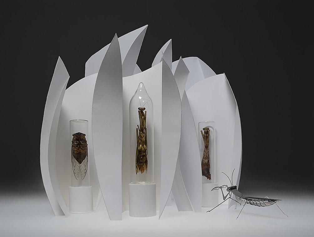 Mantis Shrine 2